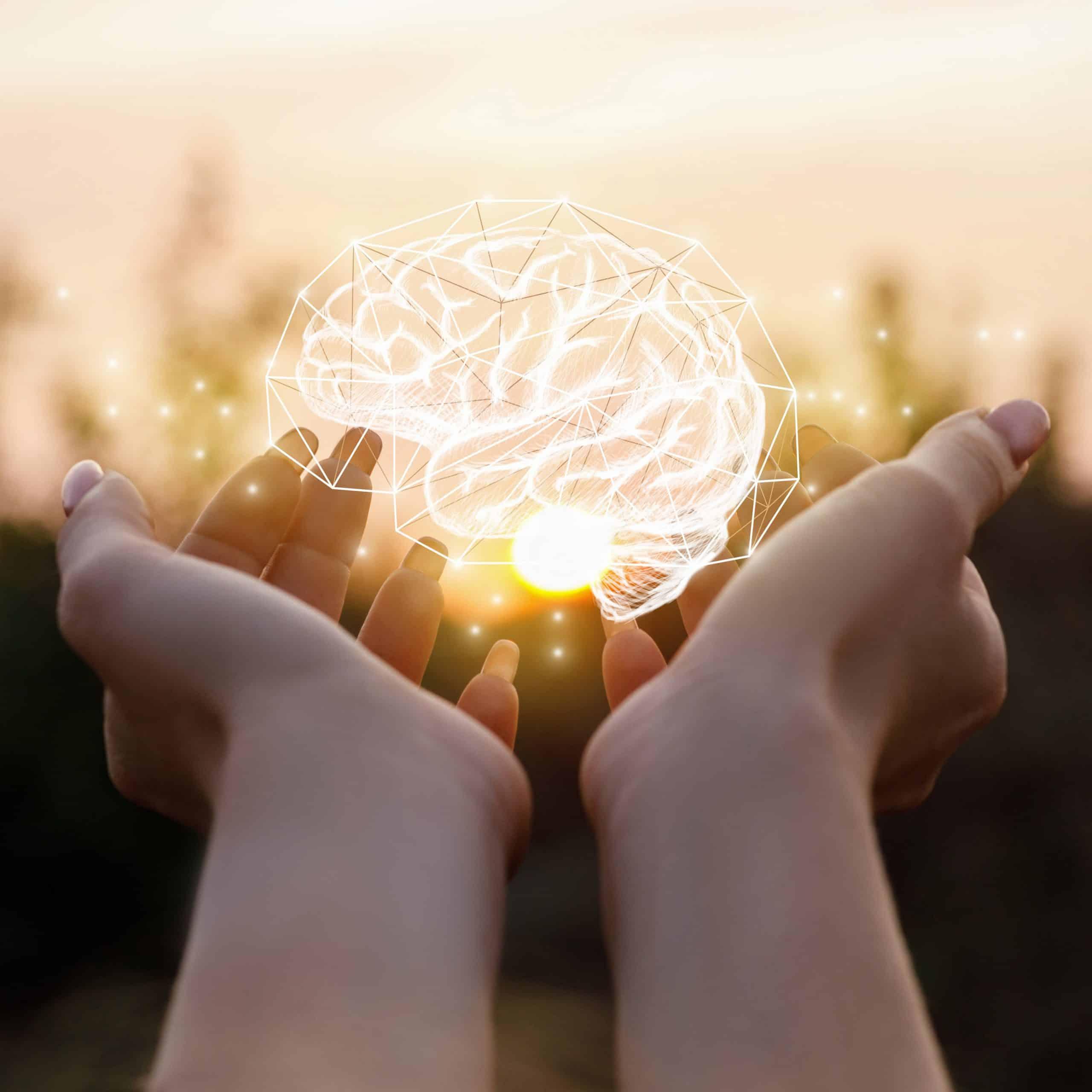 Anhand eines einzigartigen medizinischen Falls haben Forschende erstmals eindeutig die Region im Gehirn identifiziert, die exekutive Funktionen steuert