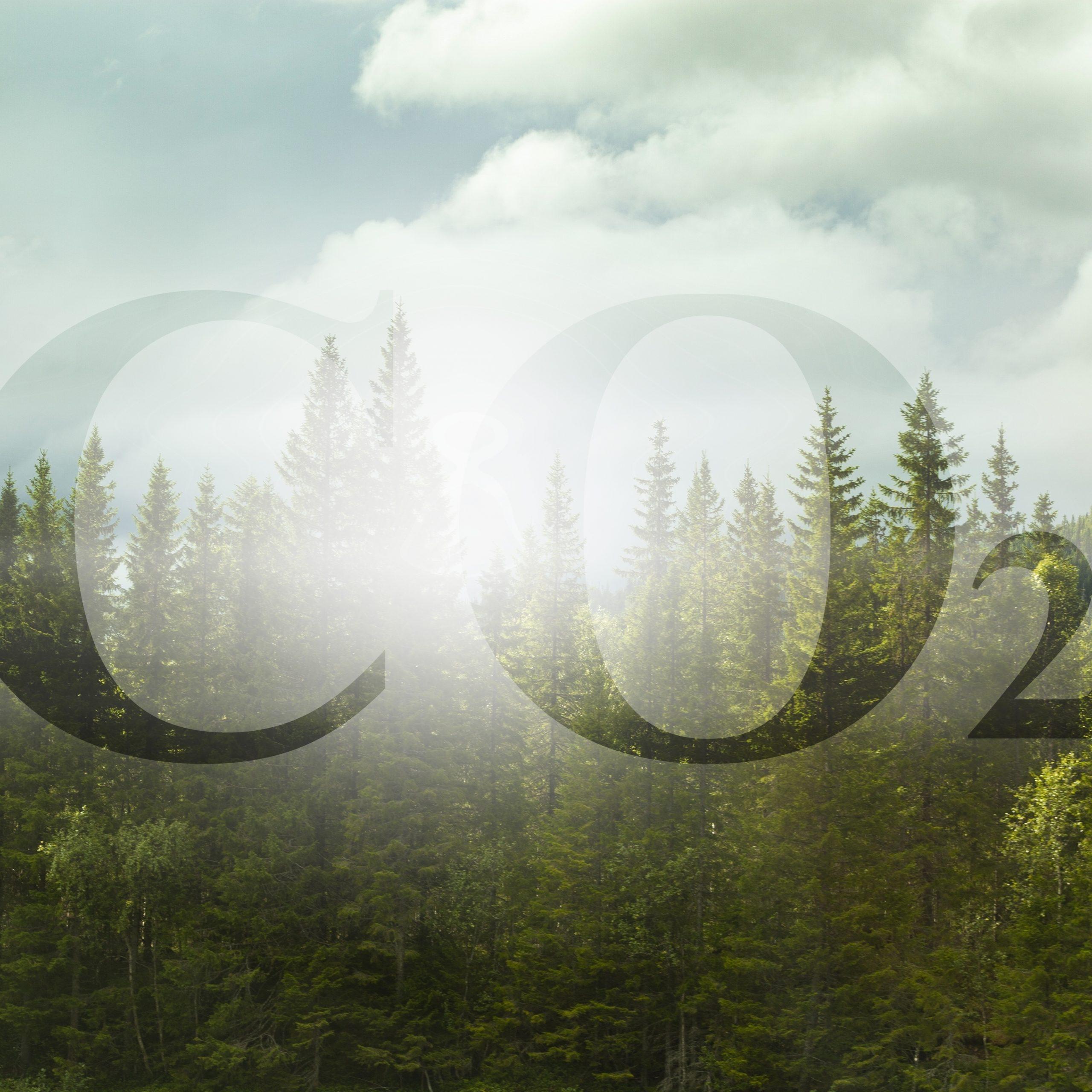 Studie analysiert den Einfluss von CO2 auf das Klima im Eozän