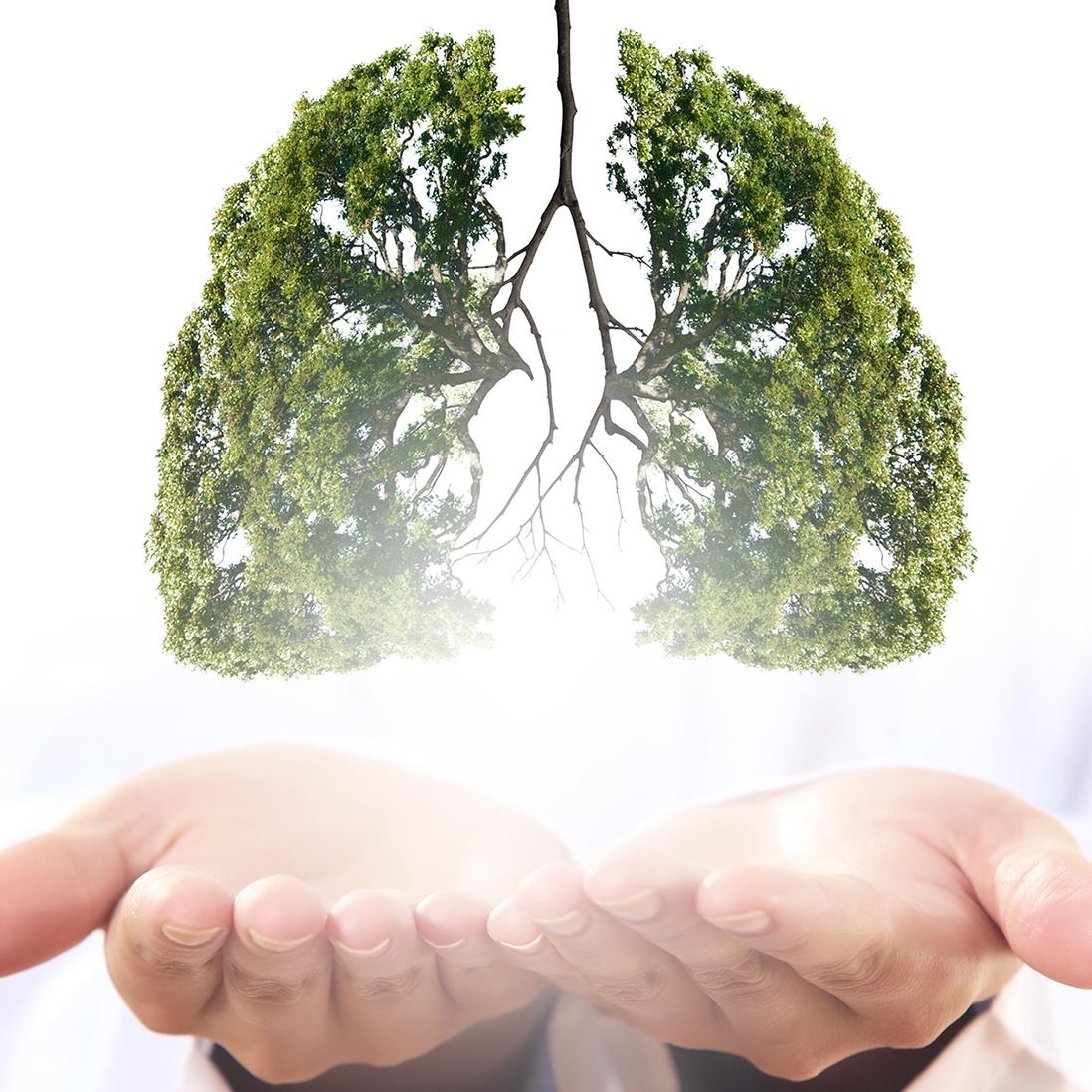 Behandlung von chronisch-entzündlichen Krankheiten sowie von akuten Erkrankungen des Respirationstraktes inclusive COVID-19