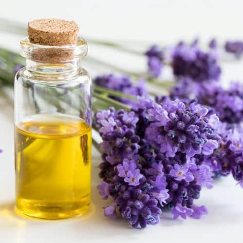 Das ätherische Öl der Lavendelblüte kann dazu beitragen Ängste und innere Unruhe zu lindern.