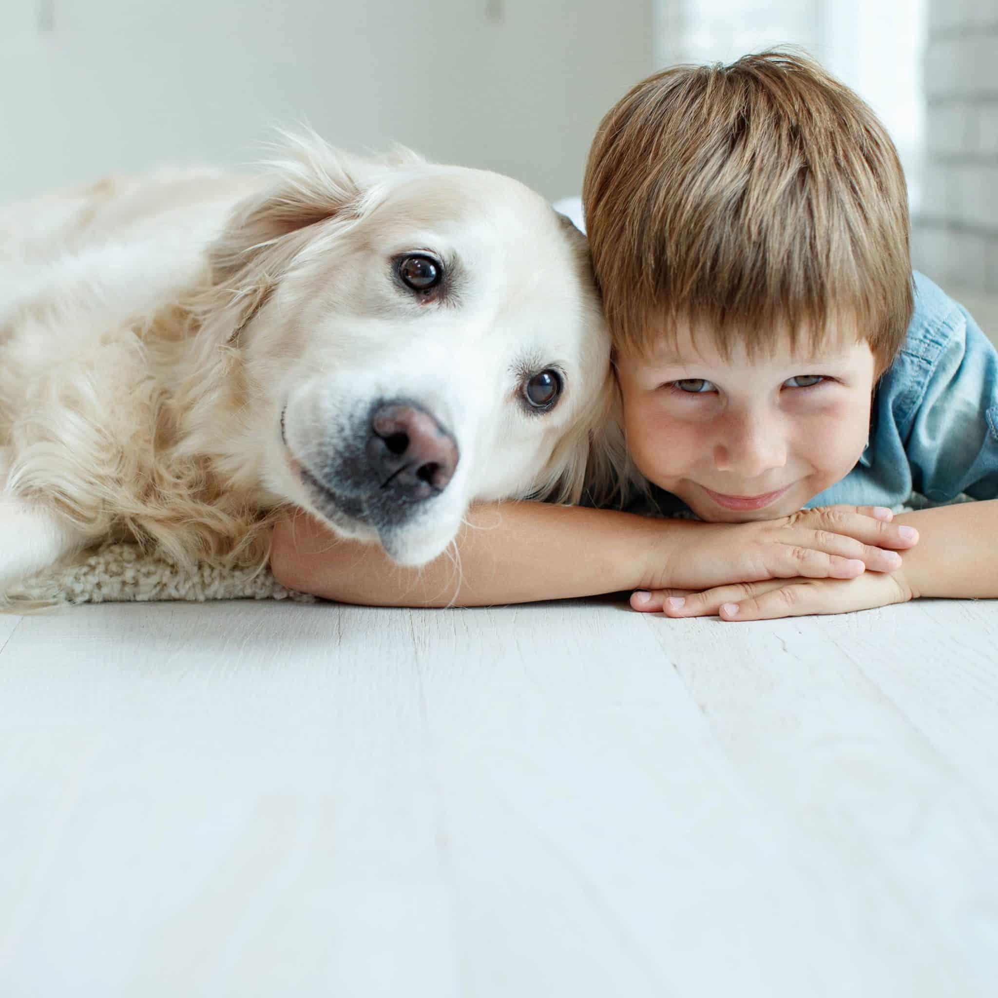 Eine Befragung von CED-Patienten und deren Freunden ergab, dass Haustiere in der Kindheit vor Colitis ulcerosa schützen könnten.