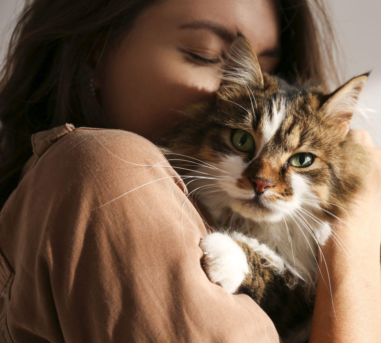 Besitzer sind vernarrt in ihre Haustiere. Doch beruht diese Liebe auf Gegenseitigkeit? Ob Tiere die Zuneigung erwidern, verrät die Körpersprache.