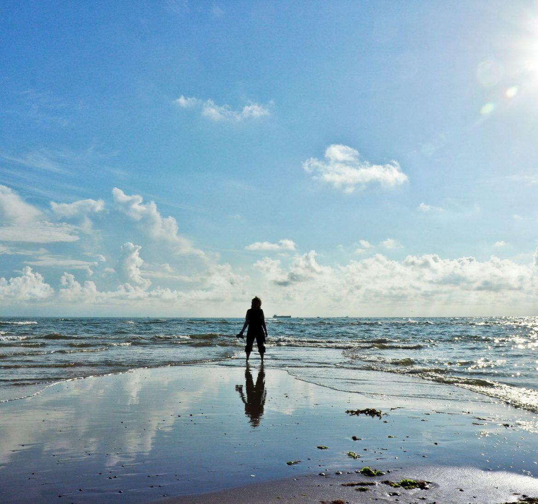 Wie stark ist der Meeresspiegel in den letzten 100 Jahren an Nord- und Ostsee angestiegen? Diese Frage u.v..m beantwortet der Meeresspiegel-Monitor.