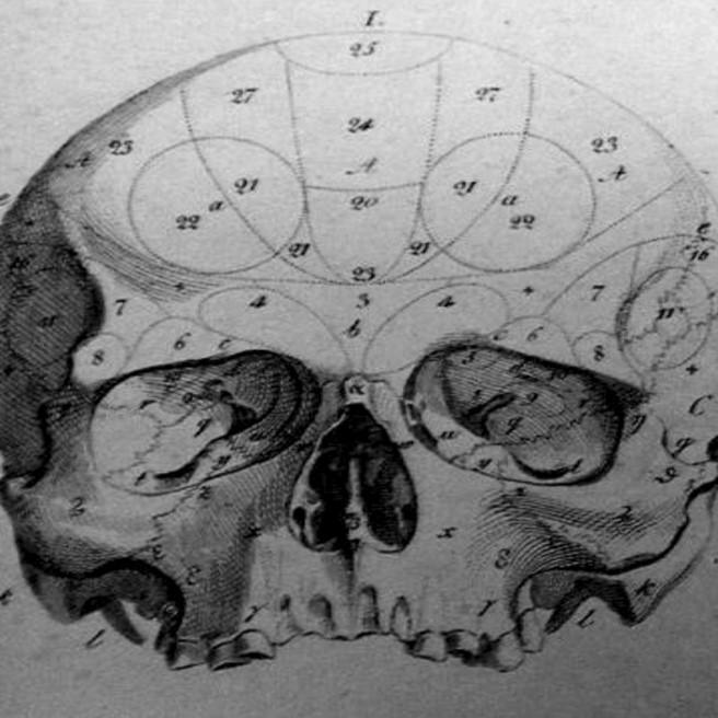 In der Tiefen-Cranio-Behandlung und -Behandlung beschäftigt sich der Osteopath mit verschiedenen zusammenhängenden Systemen des menschlichen Körpers.