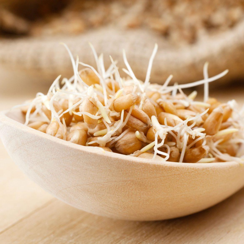 Spermidin findet sich in größeren Mengen in Hülsenfrüchten, Käse, Sojaprodukten und Weizenkeimen.
