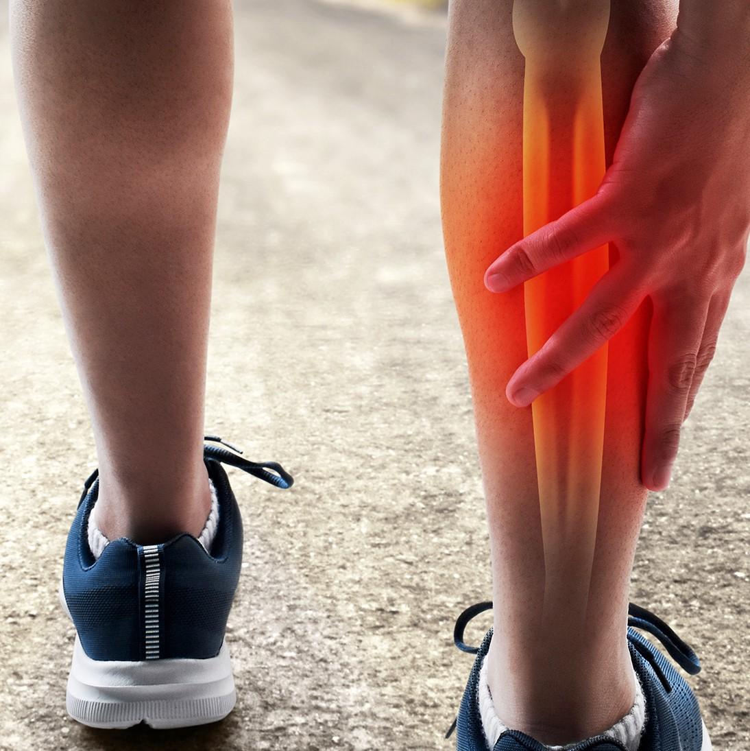 Verletzungen der Muskulatur stellen in vielen Sportarten einen der häufigsten Gründe für Trainings- und Wettkampfausfallzeiten dar.