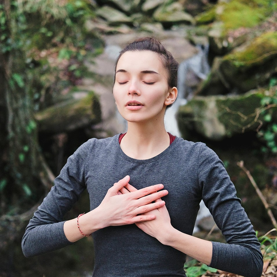 Noch völlig unterschätzt werden vielerorts die gesundheitsfördernden und auch das Immunsystem stärkenden Effekte des Waldbadens bzw. Shinrin Yoku.