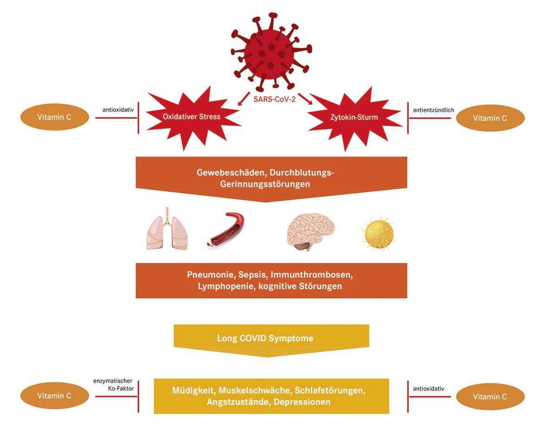 Vitamin-C-Infusionen bei akuter Infektion und in der Nachbehandlung